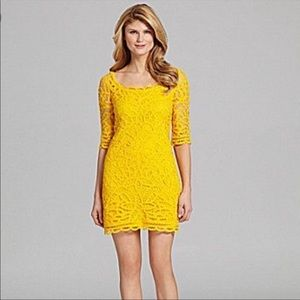 Antonio Melani Colette Crochet Lace Dress